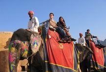 Indien - Rajasthan / Reiseziel Indien Rajasthan