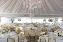 Wedding Party with White/Cream Monochromatic Accents
