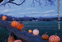 FALLING FOR FALL / Celebrate the season of change and pumpkin spice with us! // gffmag.com