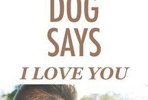 dog behaviour facts