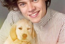 1D / So cute my two most fav things!!!!
