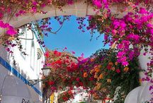 Holiday in Andalucia, Spain