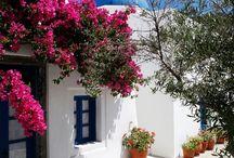 Ελλάδα, σ'αγαπώ!
