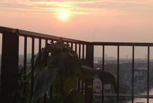 Evening suns