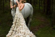 Фотосъёмка лошади