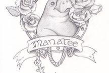 B/C Manatee