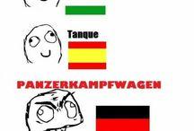 nyelvek