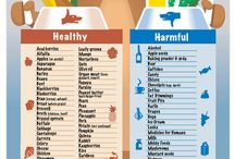Healthy & Harmful Foods for Dogs