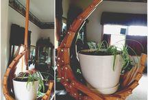 Pleasant Plantings