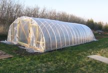 Hoop House Ideas (hubbie is gonna hate me for this) / by Holly Truebger