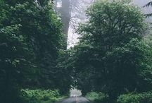 .:// RUN:. / Roads for running!