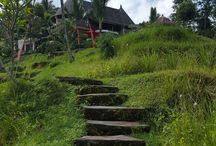 Bali 2016 - Dara Ayu Villa's and Spa