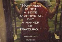 Traveler diary