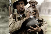 World War II / by Brad Bowditch