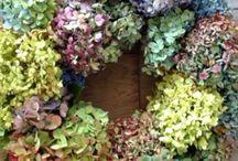 &HYDRANGEA / Ideas to feature hydrangeas in your home...