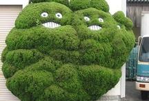 Studio Ghibli / by GeekMom