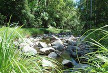11 Places you have to visit | Moreton Bay Region