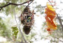 birds / by Patricia Camp