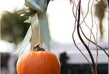 Autumn pumpkin designs