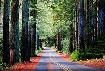 Roads / Recreate