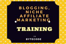 Blogging, Niche Affiliate Marketing Training Course In ByteCode