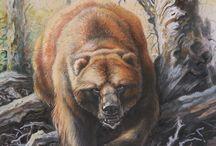 bear niedźwiedź