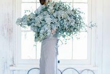 Bouquet // Flowers // Plants