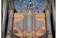 ángel pájaro órgano
