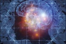cognitive and brain function