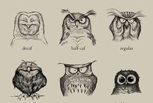 Owls / by Jess Vaughan
