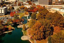 See Charlotte, NC