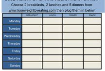 1200 Calorie a day meal/plan