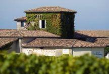 Château Clos Haut-Peyraguey / Visite du vignoble et des chais au Château Clos Haut-Peyraguey à Sauternes Bordeaux Réservez avec winetourbooking.com