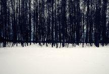 Soul Landscapes