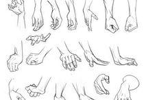 disegno corpo umano