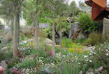 Native cottage gardens