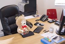 bring your teddy bear to work day 12/10/16