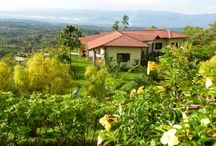 Custom Built Estate Home in Perez Zeledon / http://www.dominicalrealty.com/property/?id=4470
