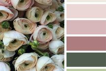 Color schemes/palettes