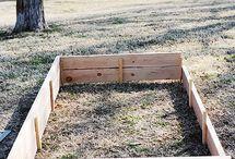 gardening / by Cinderella Mckinsey