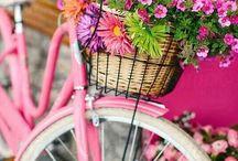 ❤️ Pink