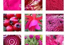 Color - PINK / Color - PINK