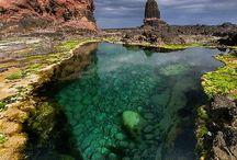 Korallrevet