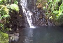 Waterfalls: The Auckland Edition / Waterfalls from around Auckland City