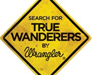 Vote for Sanjay Gurav / What a Brilliant Blog has been written... Have fun reading and watching the photos!!! https://www.truewanderers.in/travelogues/entry/664.html