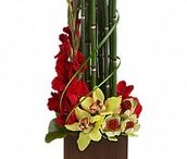 Exotic and Tropical Flowers / Purchase beautiful exotic and tropical flowers at Let Life Bloom. We offer nationwide same day flower delivery.