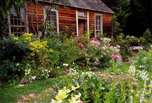 cottage garden / by Lisa Tuzzolino