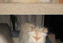 Before and After Bathtime :'D