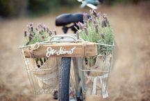 Just Married! / Wedding Transportations