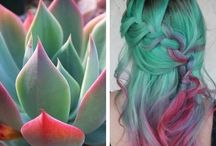 Pravana colour